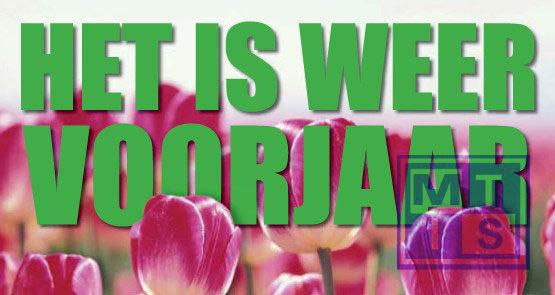 Poster: Voorjaar (per 1st.)