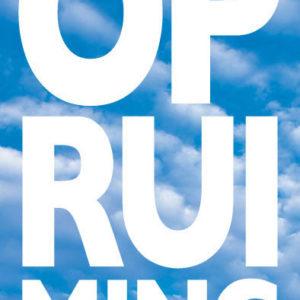 Poster: Opruiming Sky (per 1st.)