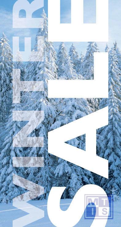 Poster: Winter sale (per 1st.)