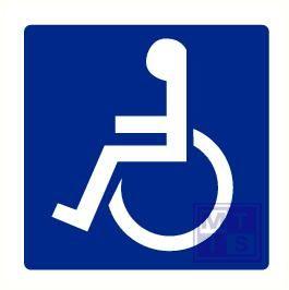 Invalide toilet plexi 300x150mm
