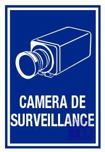 Camera de surveillance vinyl 400x600mm
