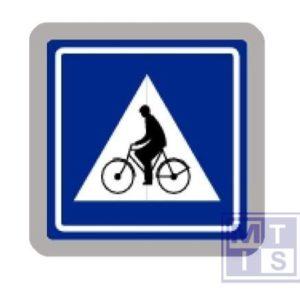 Oversteekplaats fiets/brom T2000 classe I 400x300mm