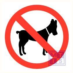 Verboden voor honden plexi 200x200mm